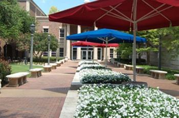 Campus Landscape