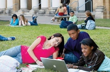 students studying outside on blanket