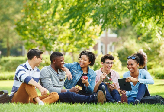 students outside on lawn